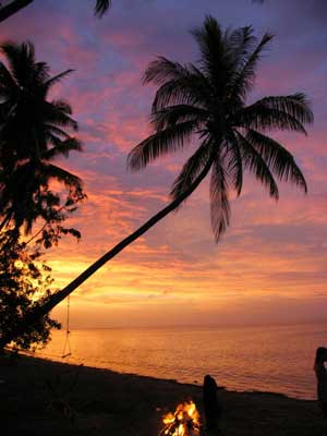 Fiji Palm Sunset006