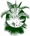 Commercial member of The International Palm Society.